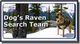 Dog's Raven Search Team photo.
